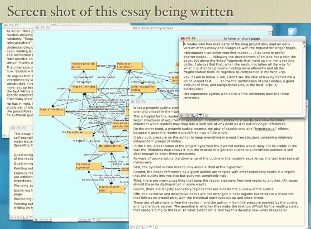 Screen shot of an essay being written